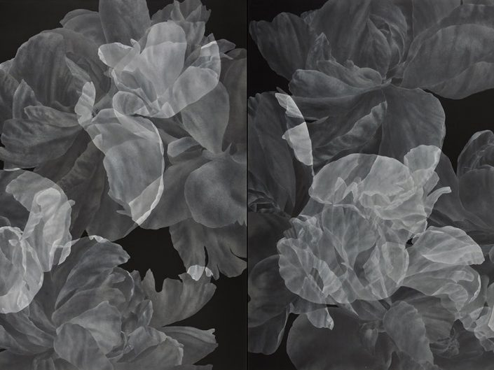 Greg Murr BLOOMS, [2-step fluctuation], 2015, acrylic on canvas, 80 x 150 cm