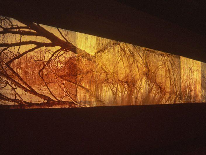 Christoph Both-Asmus, Inner Landscape, 2006, 6 slides, 6 slide projectors,