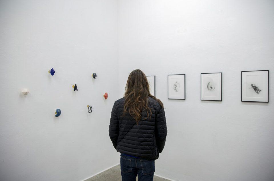 Muriel Gallardo at Galerie Eigenheim