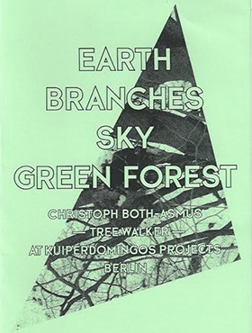 Earth, Branches, Sky, Green Forest