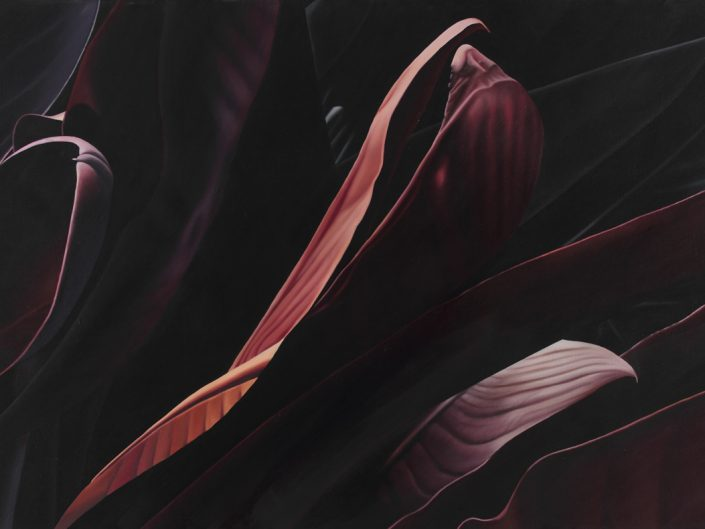 Franziska Rutishauser CALM II-DARK LIGHT MATTER, 2011, oil on canvas, 105 x 190 cm